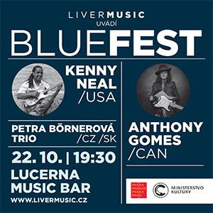 2017-Bluefest