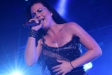 Evanescence,Amy Lee