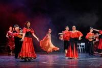 Tradiční romská hudba: Tři kapely za jeden večer